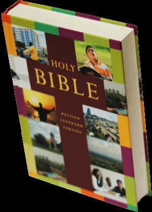 Holy-Bible-revised strandard version avec illustrations 3500-(4)